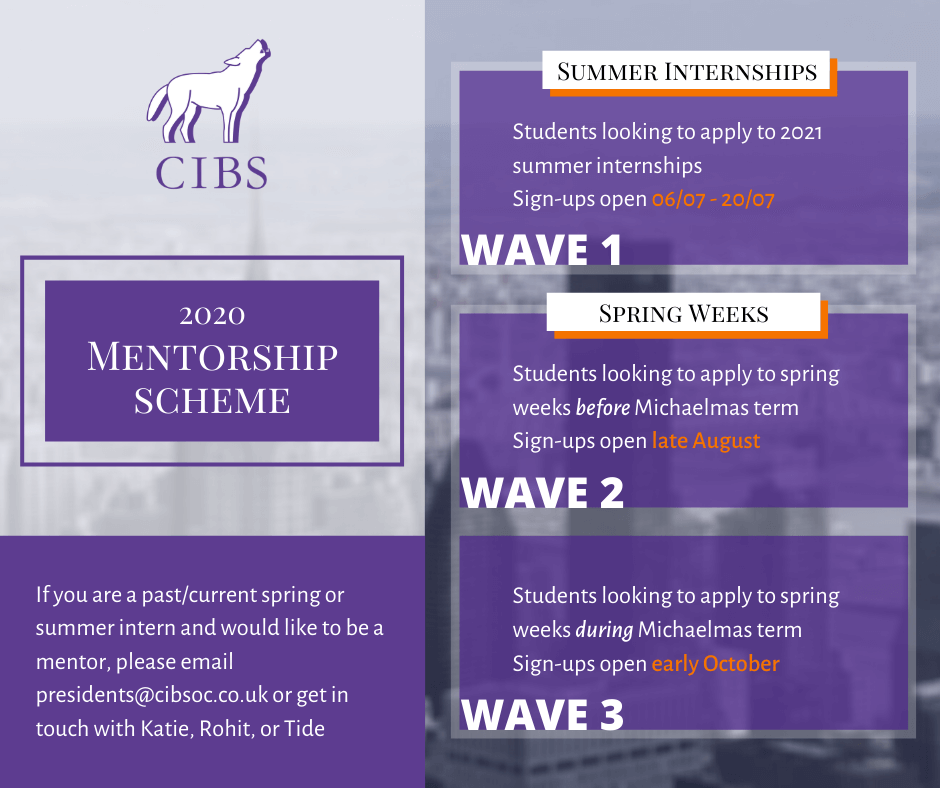 mentorship graphic